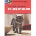 un chat heureur en appartement