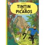 TintinPicarosfr