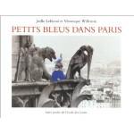 Petits bleus dans Paris fr