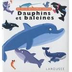 Mes Petites Encyclopedies Larousse - Dauphins et baleines - fr