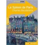 Le Spleen de Paris - fr